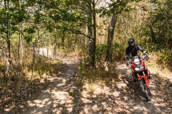 Enduropark Meltewitz Wald - Honda Africa Twin